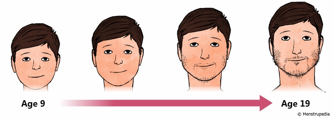Facing Puberty Head on (with adolescents on the Autistic Spectrum)