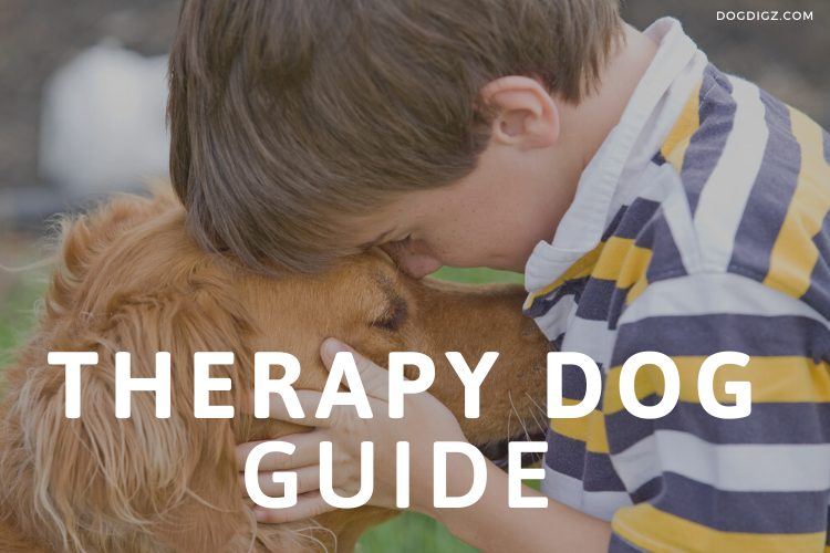 Is a Therapy Dog Right for Your Child with Autism