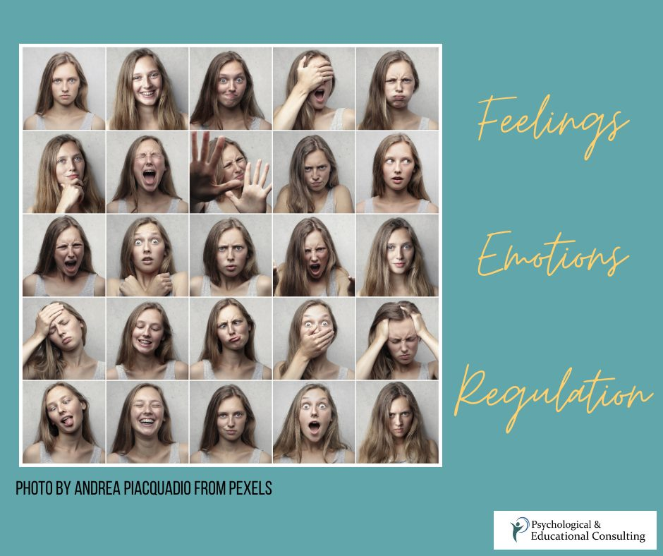 5 Charts You Need If Identifying Your Emotions Is Hard
